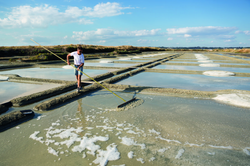 A trip to Pays de la Loire wouldn't be complete without a visit to its salt marshes.