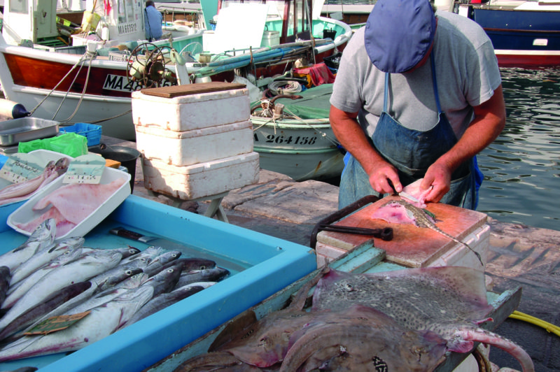 Marseille's fish market is quite the whiffy affair but it's the best around.