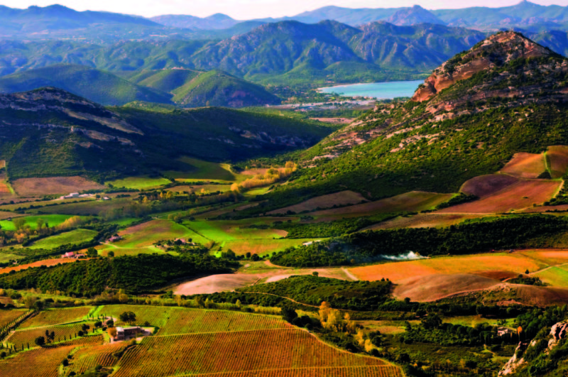 Corsica's undulating landscape is covered in maquis shrubland, forests and vineyards.