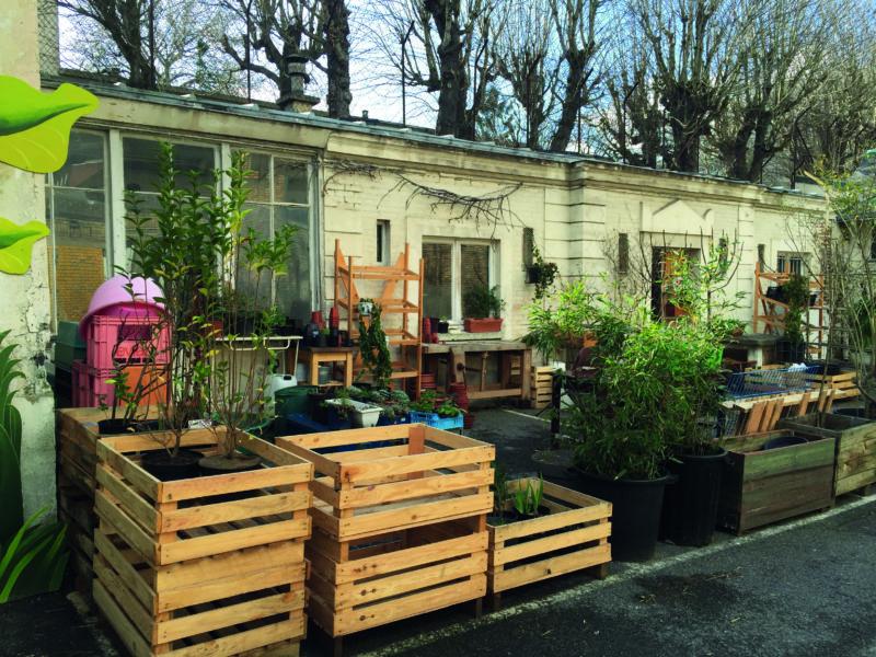 Paris's secret plant nursery