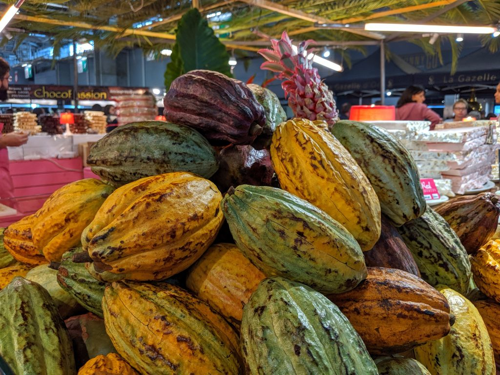 Cacao display