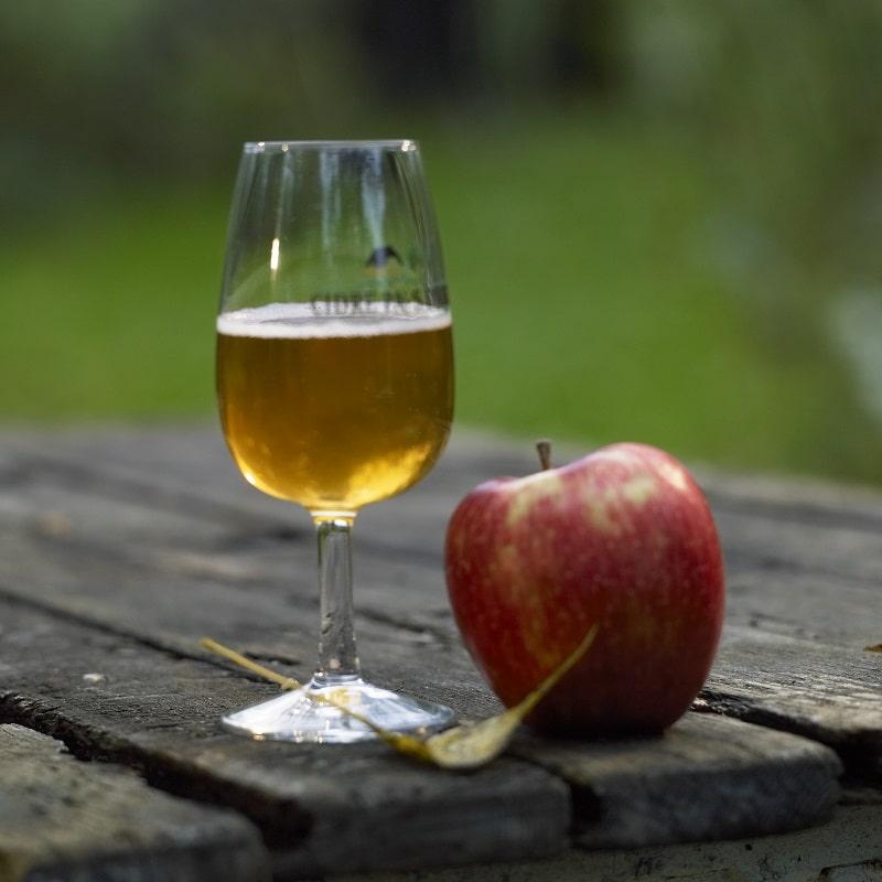 Apple tasting session