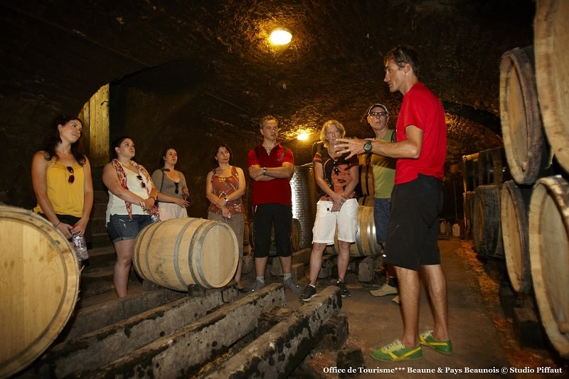Wine tours in the cellar from local winemaker