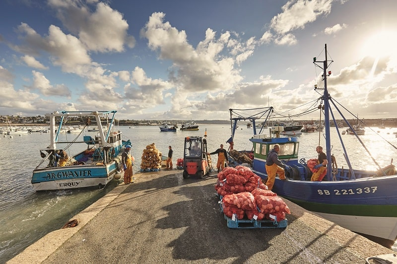 Brittany fishing port