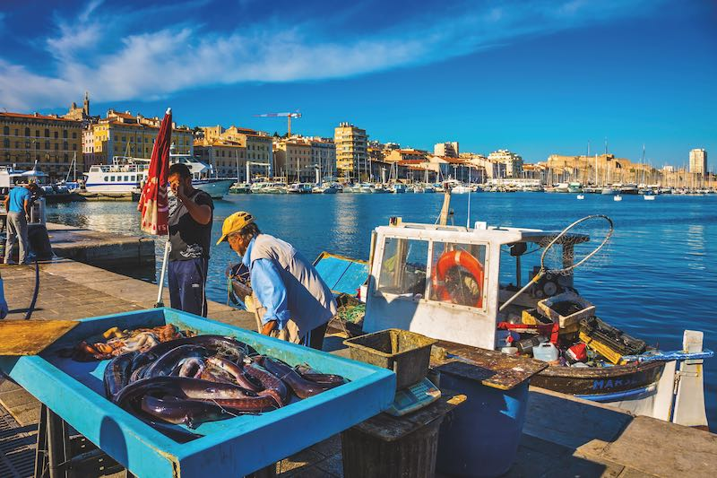 The morning fish market in the old port of Marseilles. Fishermen are laid out on the counter fresh catch