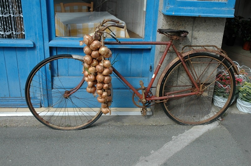 onion bicycle in roscoff brittany